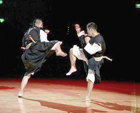 会员演练少林寺拳法招式图片