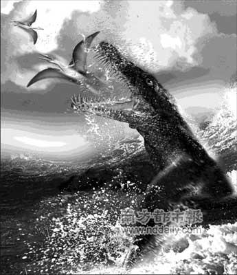 5亿岁的史前海洋动物的化石