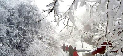 的情趣,每一片雪花都有一幕美好的回忆.   小时候我喜欢雪,长高清图片