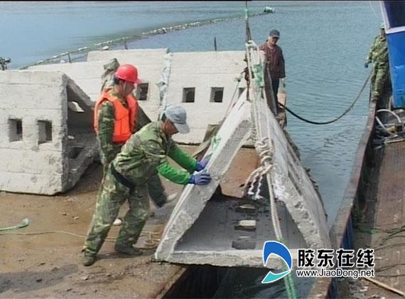 长岛县南隍城乡进行第三期人工鱼礁投放(组图)
