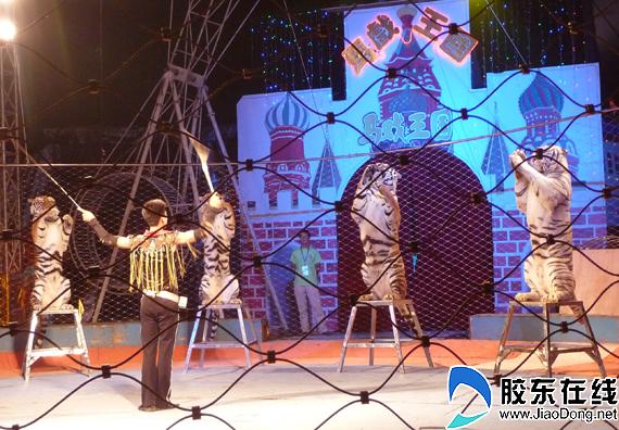 四位角绝色俄罗斯美女的舞蹈