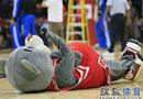 火箭熊助威季前赛 休城宠物场上最爱搞怪