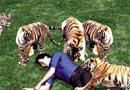 深圳野生动物园发生惨剧 工人掉虎山被撕咬夺命