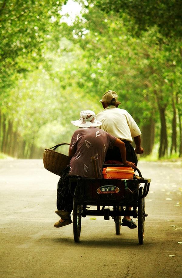 《三轮车上的浪漫》