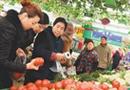 蔬菜价格持续上涨势头被遏制