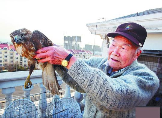 山东 齐鲁轶闻 正文    虽然受到一些惊吓,但是关在笼子里的老鹰依然
