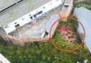 重庆一小区紧挨27座坟墓 清明时小孩被吓哭(图)