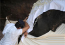 斯里兰卡下葬55岁大象(组图)