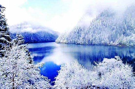 冬天的雪景