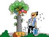 生态与经济双赢