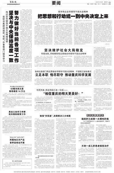 十八大决议_重庆市党政机关:坚决拥护中央决定迎接十八大