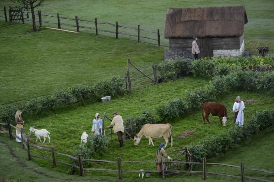 动物成群登场尽显英伦田园风光