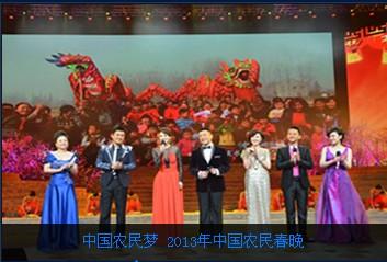 中国人口老龄化_2013中国农民人口