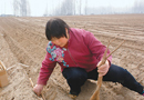 中国南方12省土地沙化 7万多农民旱季喝不上水