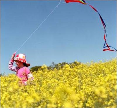 孩子的户外时光:春天踏春放风筝 夏天露营野炊