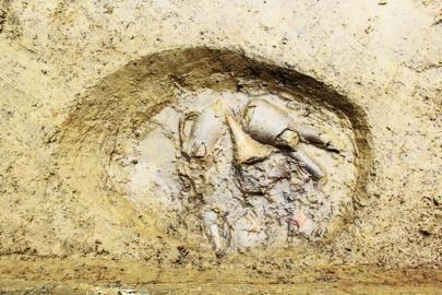 广汉狮象村考古:三星堆遗址范围扩大(图)