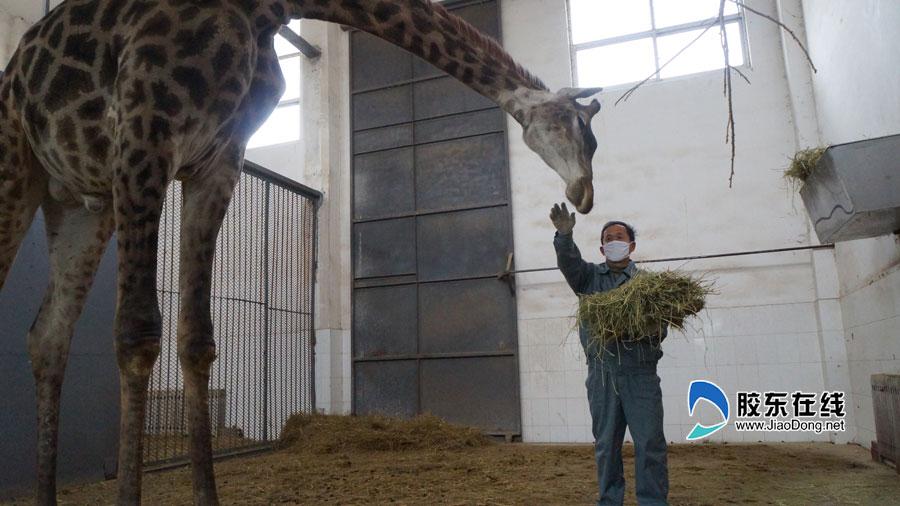 动物饲养员_动物饲养员和他们的孩子·重庆晨报数字报