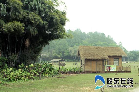 长隆野生动物园中《爸爸去那儿》电影拍摄场景