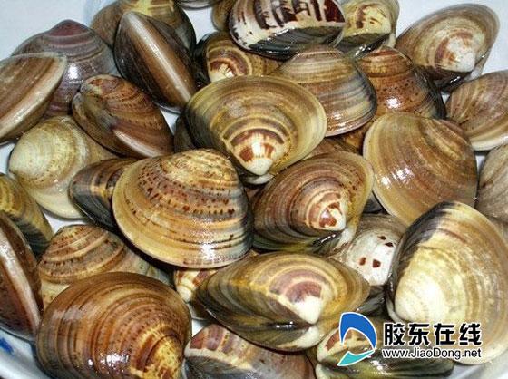 莱州地理标志商标增至13件 文蛤对虾等海鲜入列