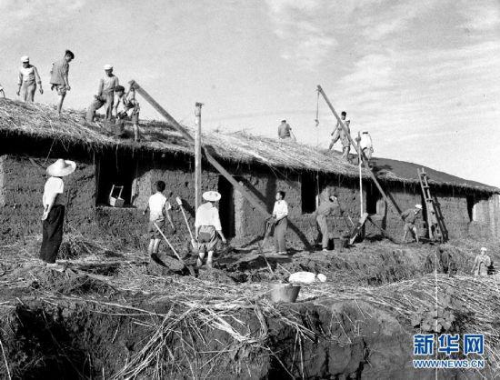 在大庆油田建设初期,职工们自己动手盖房屋(资料照片).