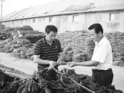 长岛南隍城乡南隍城村李盛平:小渔村的当家人
