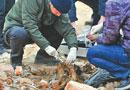济南建筑渣土中惊现碎尸块 警方称系高校遗漏