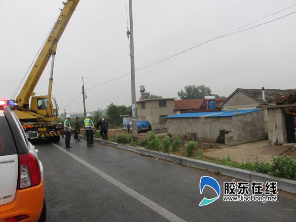 栖霞公路局拆除违法设置的电线杆