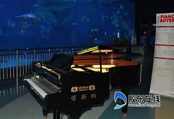 博斯纳钢琴助阵2015中国人资论坛峰会(图)