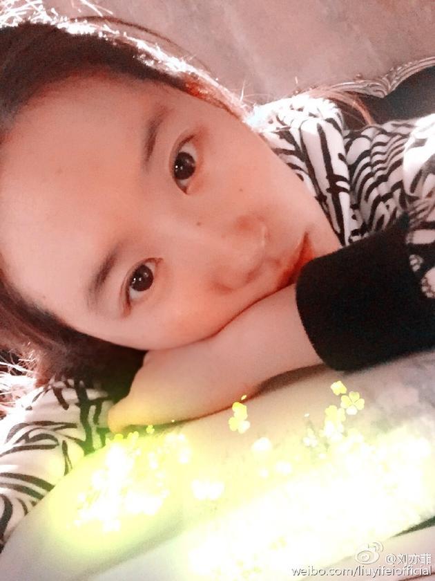 刘亦菲晒素颜读书照 扎马尾清纯似高中生