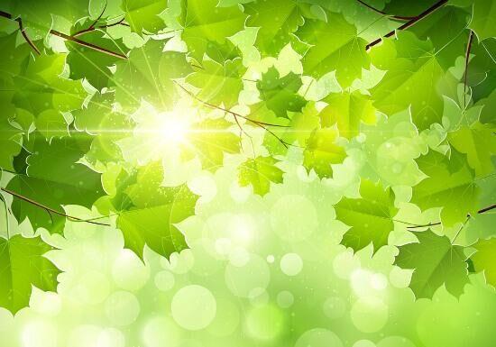 感恩春天——献给自然的歌