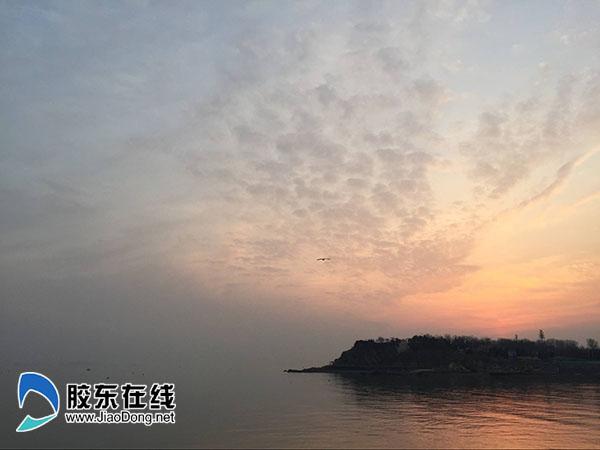 烟台海边风景(市民记者  刘玉曦 摄)