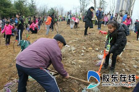 莱山实小学生参加植树节社会实践活动
