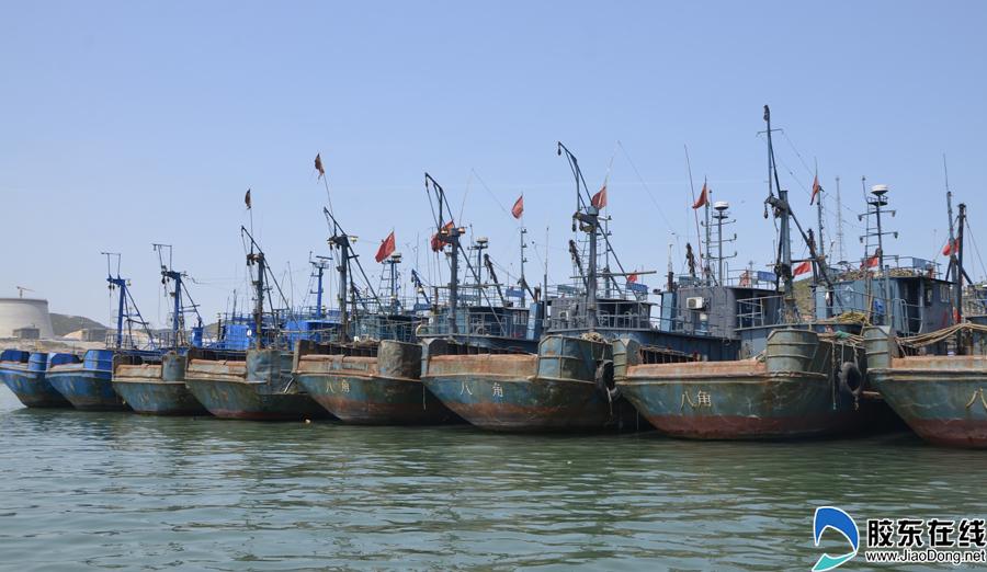 让海洋资源休养生息烟台7000艘渔船进入休