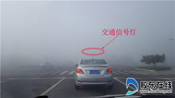 周一上班烟台市区遇大雾堵车 网友戏称