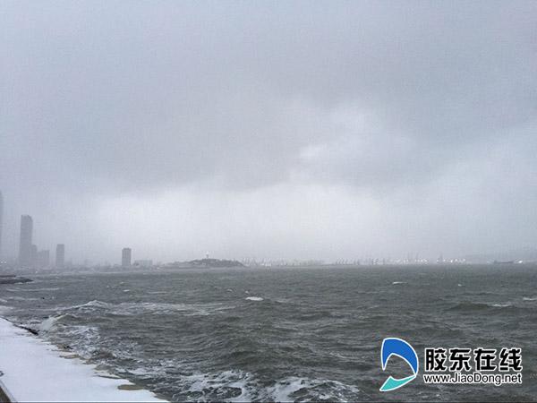 1月11日烟台海滨 刘玉曦摄22