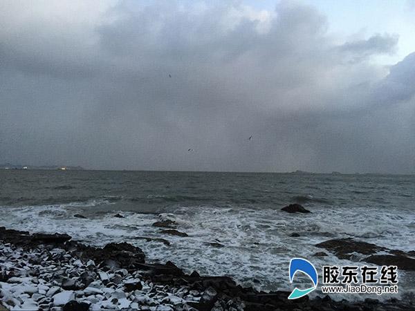 1月11日烟台海滨 刘玉曦摄21
