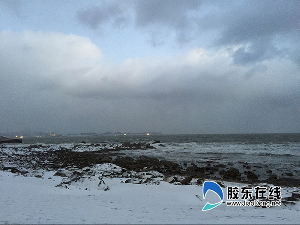 1月11日烟台海滨 刘玉曦摄1212
