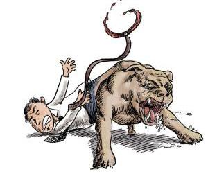 小区里两只狗互掐致一人受伤 两主人对簿公堂