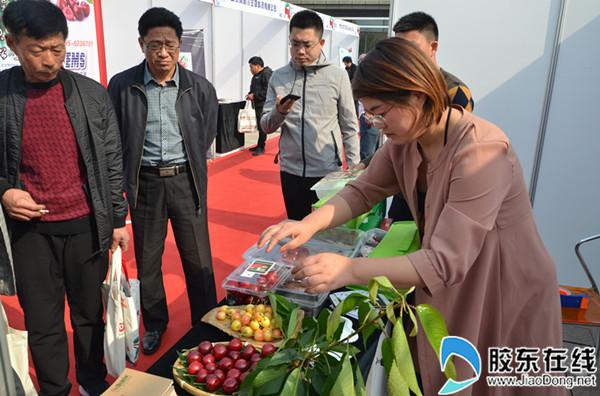 2018第二届中国大樱桃产销研大会