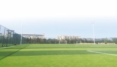 体育公园全民健身广场成为烟台人的运动圣地