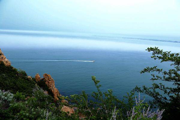胶东在线7月5日讯(见习记者 许加薇) 昔时仙山今安在,请君探幽长岛来。此时的海上仙山长岛,正逢海雾弥漫之中,如梦如幻、如诗如画,这里的海上景观美得令人惊叹。长岛,因海而生、凭海而兴,目前,在全省,乃至全国海洋生态文明高地、仙境海岸旅游核心名片,以及国家战略安全屏障建设方面,正努力在经略海洋中,展现新作为,增创新优势。   长岛县,自古享有蓬莱、方丈、瀛洲海上三神山的美誉。长岛地处山东省最北端,黄渤海的交汇处,也是进出渤海必经的黄金水道;这里由151个岛屿组成,岛陆面积56平方公里,