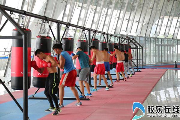 拳击运动员日常训练场景