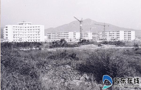 1984年11月刚峻工的学生宿舍楼和家属楼_副本