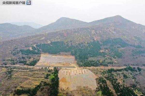 河南登封一村庄毁林造停车场 当地成立调查组