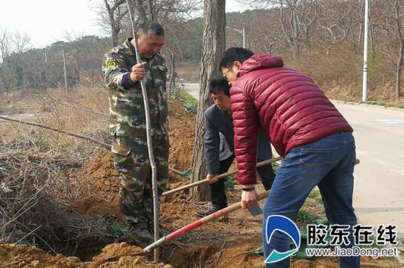 《秒速时时彩娱乐》_长岛县黑山乡全面开启美化绿化植树造林行动