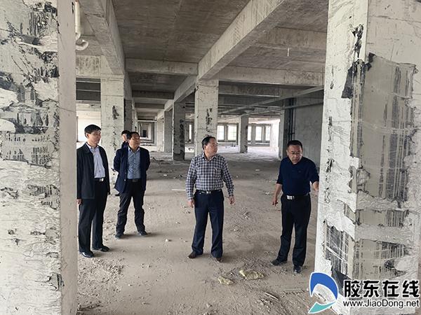 烟台市卫健委领导调研莱阳市妇幼卫生工作1