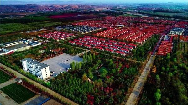 姜疃镇濯村