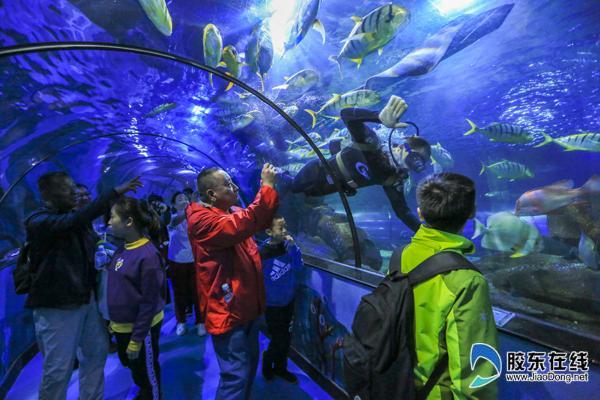 海洋世界海底隧道