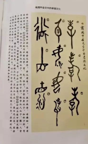 姜瑞光:向甲骨文的研究者致敬