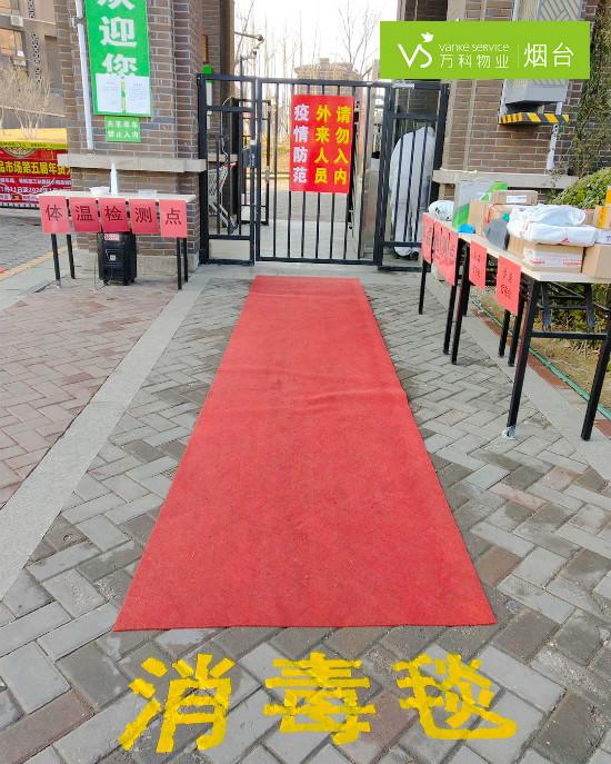 消毒地毯 (2)